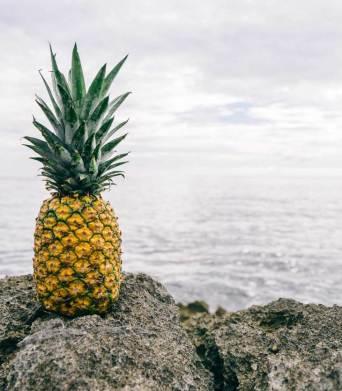 food-pineapple